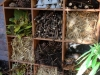 insect-hotel-at-bluecoat-arts-centre