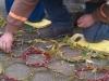 grozone-making-sculptures2